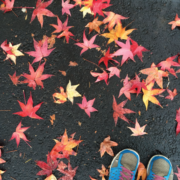 running shoes in the fall leaves